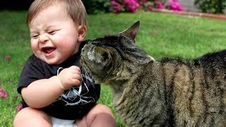 Best BABIES LAUGHING at ANIMALS! - CAUTION; Extremely funny compilation!