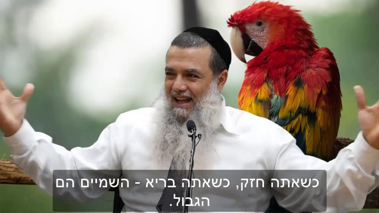 הרב יגאל כהן - אל תפגע מבני אדם HD {כתוביות} - חזק ביותר!