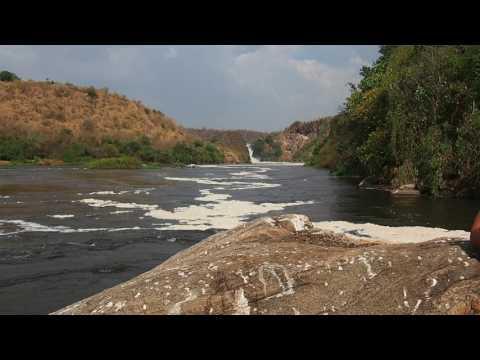 P1271549   Murchison Falls