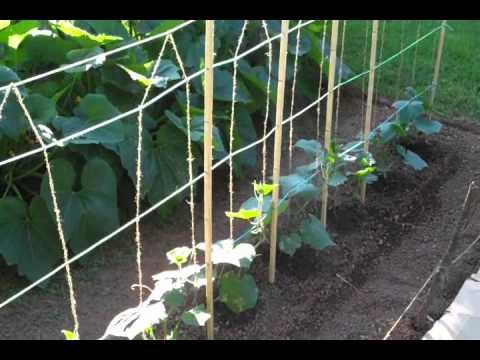 Horizontal Fence Ideas Diy