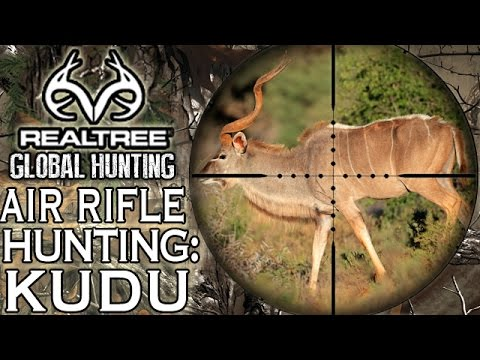Benjamin Bulldog Big Bore Air Rifle Hunting in South Africa: Kudu