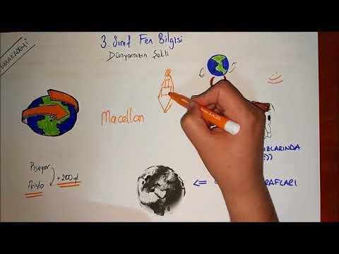 3 Sınıf Fen Bilgisi Dünyamızın şekli Youtube