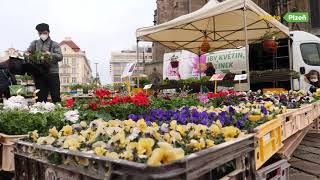 Plzeň v době lockdownu