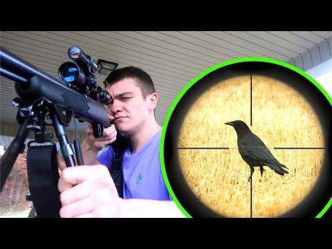 Crow Hunting W/ Scope Cam!