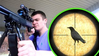 Crow Hunting w/ Scope cam!