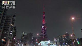 23日に東京タワーは開業から60年を迎えました。それを記念して還暦カラ...