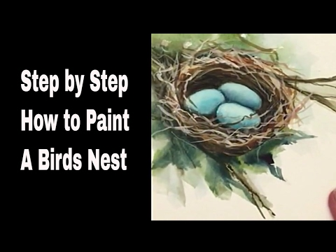 How to paint a Bird's Nest: MIMI'S SKETCHBOOK