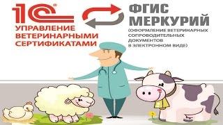 Налаштування інтеграції 1С:Управління Ветеринарними Сертифікатами з ДВС Меркурій