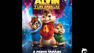 Mi Gata Oficial Alvin Y Las Ardillas