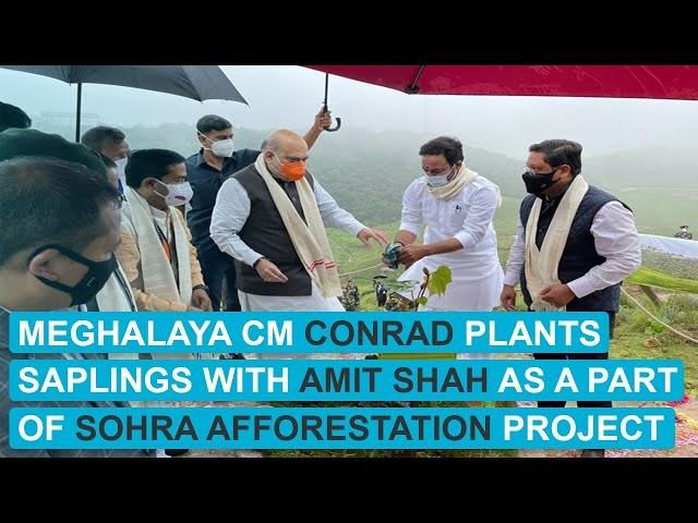 WATCH: Meghalaya CM Conrad plants saplings with Amit Shah as a part of Sohra Afforestation Project