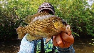 Rock Bass Fishing Fox River