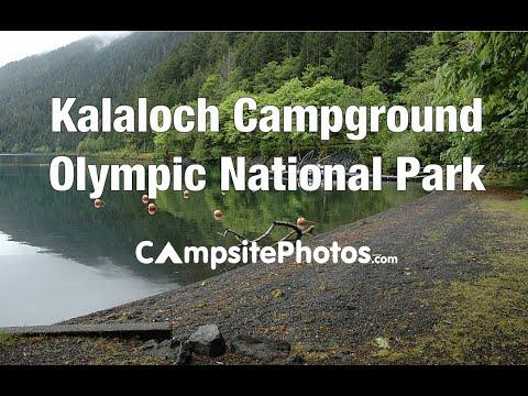 Kalaloch Campround, Olympic National Park, Washington Campsite Photos