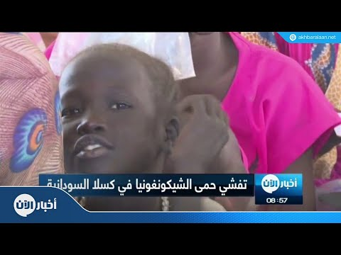 السودان تعلن تفشي وباء الشيكونغونيا  - نشر قبل 2 ساعة