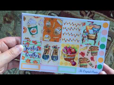 Haul!  Erin Condren, Moose & Mittens, M. Crystal Prints, PO Box Goodies