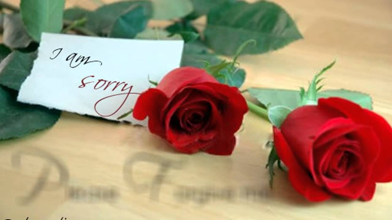 Sorry | Apology | Love | Ecards | Greetings | Messages | Video | 02 17    YouTube  Apology Card Messages