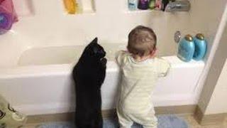 Смешные дети и кошки купаются вместе