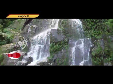 Darjeeling Tourism - Morning Coffee - 15-11-2014 - 99tv