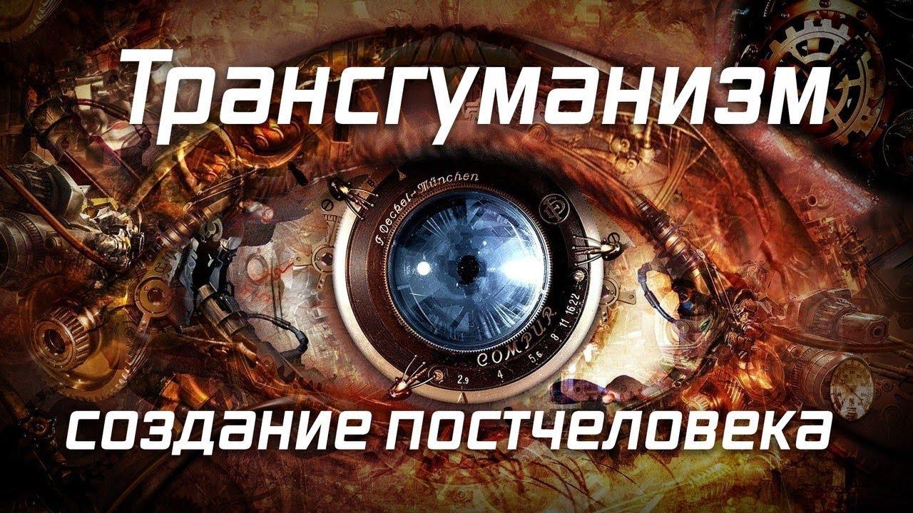 Ольга Четверикова. Они ведают что творят: оцифровка человека