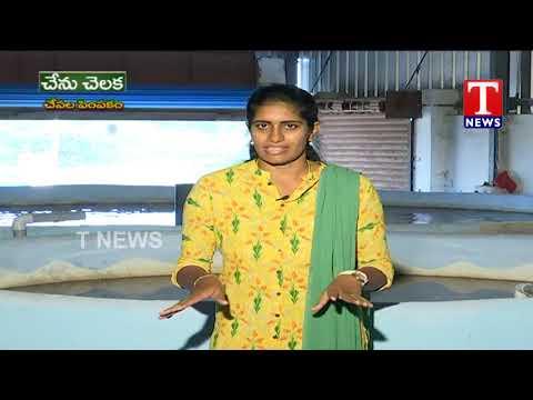 Fish Farming In RAS System By Farmer Upender   TNews Telugu
