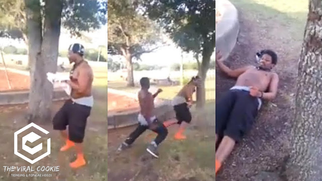 Guy Knocked Out And Pees Himself Black Guy Runs Into A Tree And Knocks Himself Out Youtube