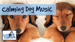 20 Minutes Of Relaxing Dog Music To Help With Barking, Crate Training And Crying.