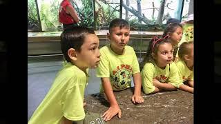Lake Street Visit to Staten Island Zoo | Alpha Summer Camp