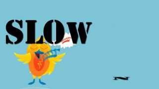 Slow Down & Bird motion