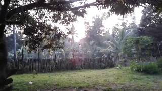 Sunrise in Balamban, Cebu