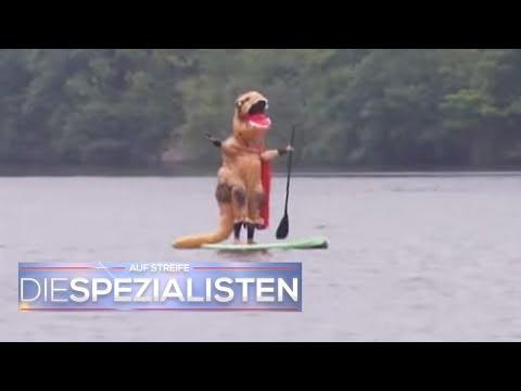 Horror beim Stand Up Paddling: Dino ersäuft im See | Auf Streife - Die Spezialisten | SAT.1 TV