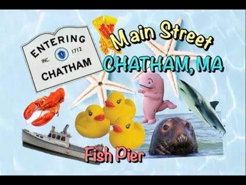 Cape Cod Visit To CHATHAM Massachusetts!  Main Street, Fish Pier, Seals & More!
