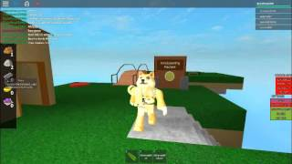 Doge Plays Roblox(New!)