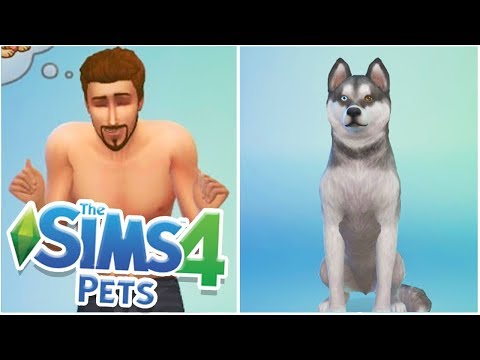 SIMS - 100 CATS & DOGS CHALLENGE! | #1