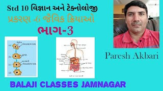 Std 10 વિજ્ઞાન  પાઠ 6 part 3 જૈવિક ક્રિયાઓ(jaivik kriyao)