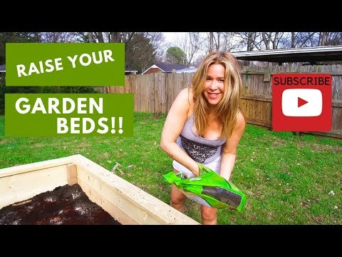 Learn How to Build a Wood Raised Organic Garden Bed DIY Cheap