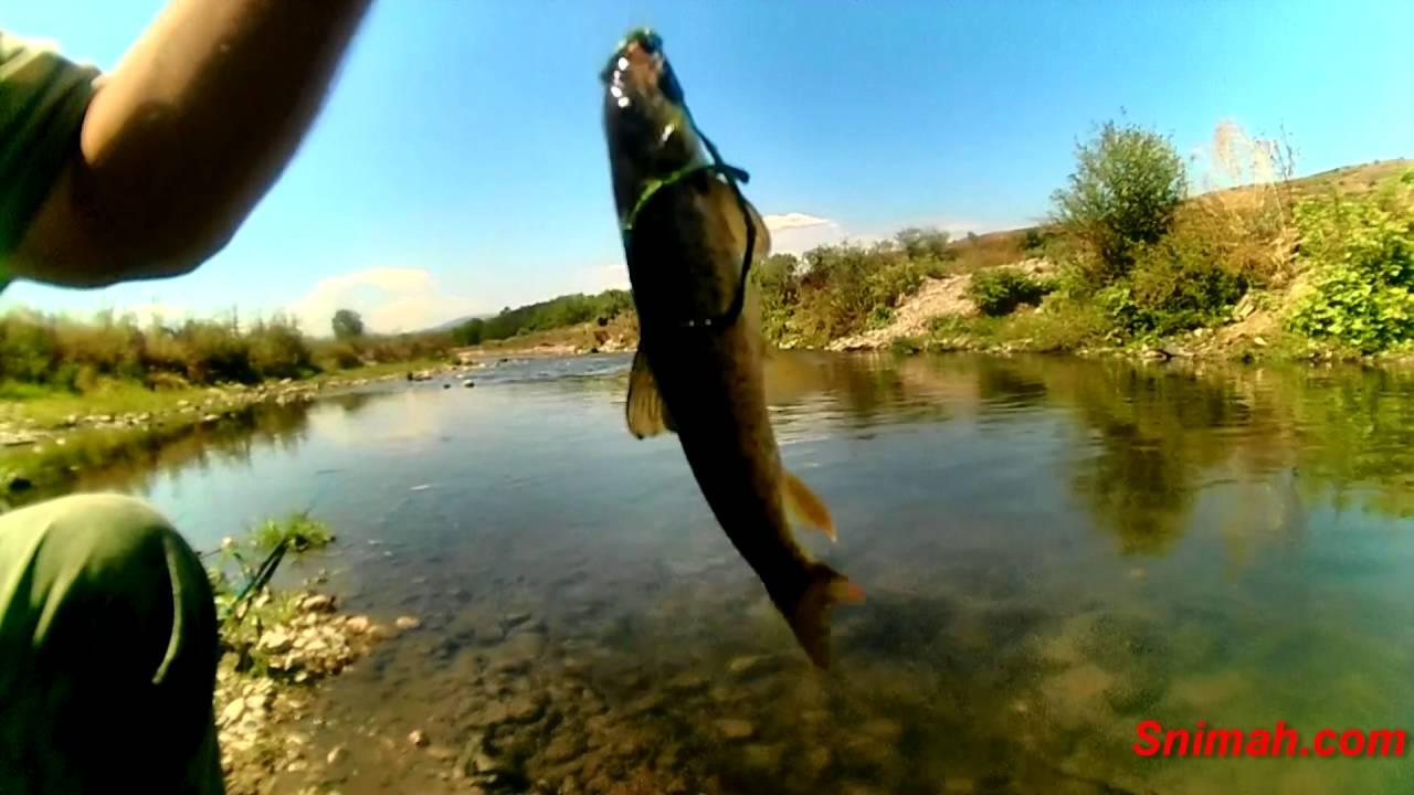 Риболов на черна мряна по река Джерман - август 2016 - YouTube