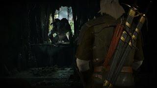 Ведьмак 3 Дикая Охота (Таинственные следы) #62