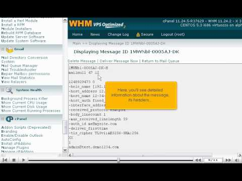 How To Manage The Mail Queue In WHM - WHM Service Tutorials