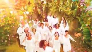 The Polyphonic Spree – Section 9 (Light & Day/Reach for the Sun)