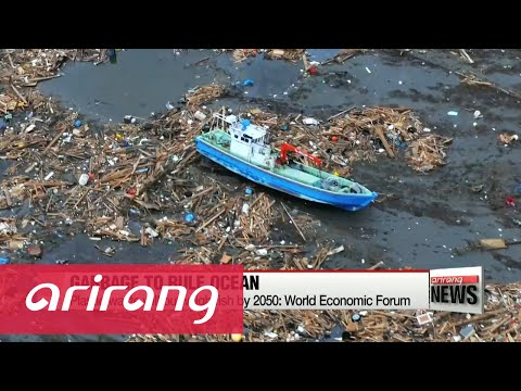 More plastic than fish in world's oceans by 2050: report