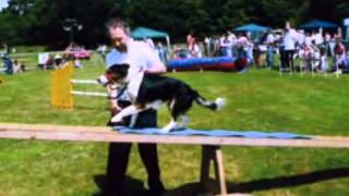 Dog Training - Ilkeston District Dog Training Club
