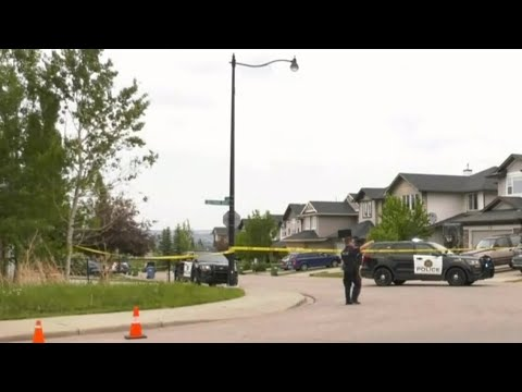 Man and dog shot dead in Calgary, suspect still at large