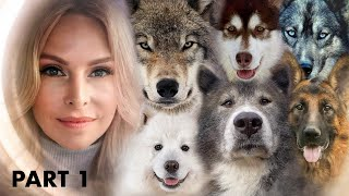 TOP 10 DOGS THAT LOOK LIKE WOLVES  PART 1