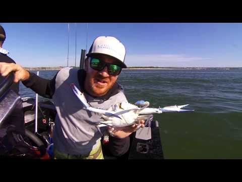 IFISH Botany Bay For Blue Swimmer Crabs & Mulloway