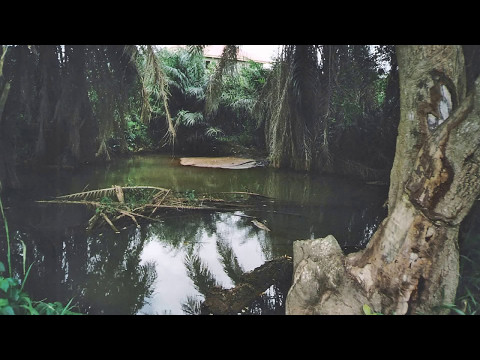 ODOYEWU INTERNATIONAL BAND OF GHANA