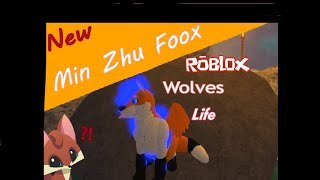 Roblox Wolves' Life 3 what will happen? When Min Become a woman