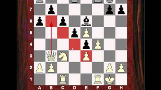 Chess Strategy: Evolution of Chess Style #104.1 - Max Euwe games - 1928 Olympiad Amateur World Ch.