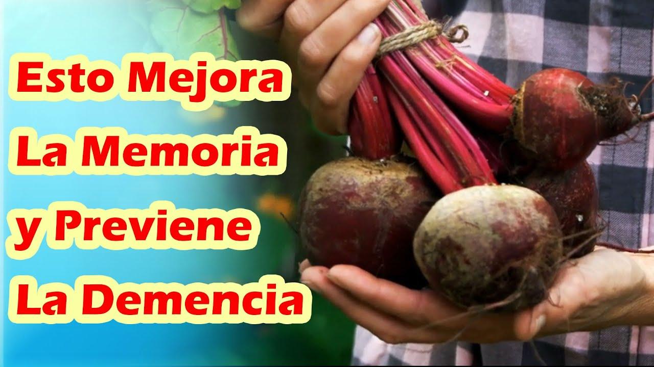Alimentos Para Mejorar La Memoria y Ayudar a Prevenir El Alzheimer y La Demencia