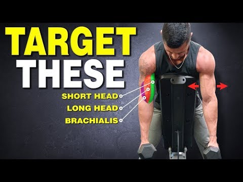 Top 6 Biceps Exercises for THICKER ARMS