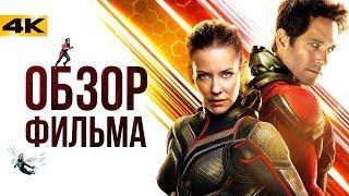Мстители 3.5 - обзор фильма 'Человек-Муравей и Оса'