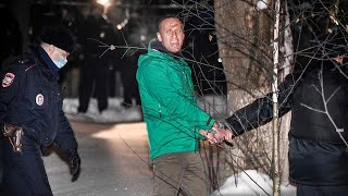 video: Alexei Navalny calls for supporters to 'take to streets' after being jailed for 30 days in rushed trial